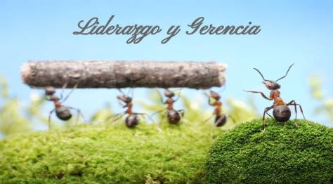Liderazgo y Gerencia AGOSTO 2013 (1)