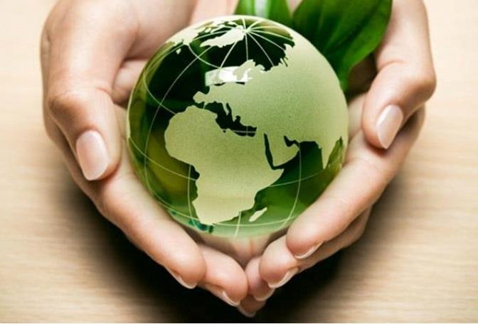 Oficinas ecológicas: poniendo nuestro granito de arena