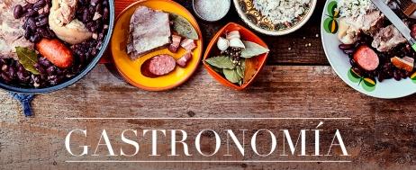 Gastronomía (raul)